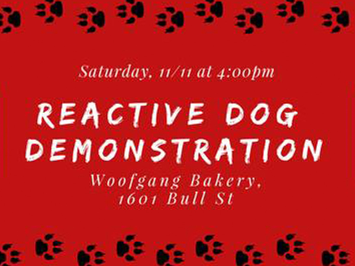 Reactive Dog Demonstration with Maria G. Huntoon Canine Consulting Services