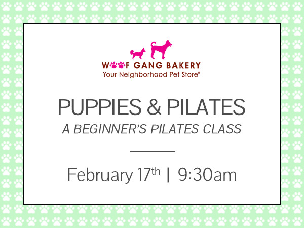 Puppies & Pilates, February 17, 2018 at 9:30am benefiting One Love Animal Rescue